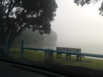 A beautiful foggy day in Auckland yesterday!